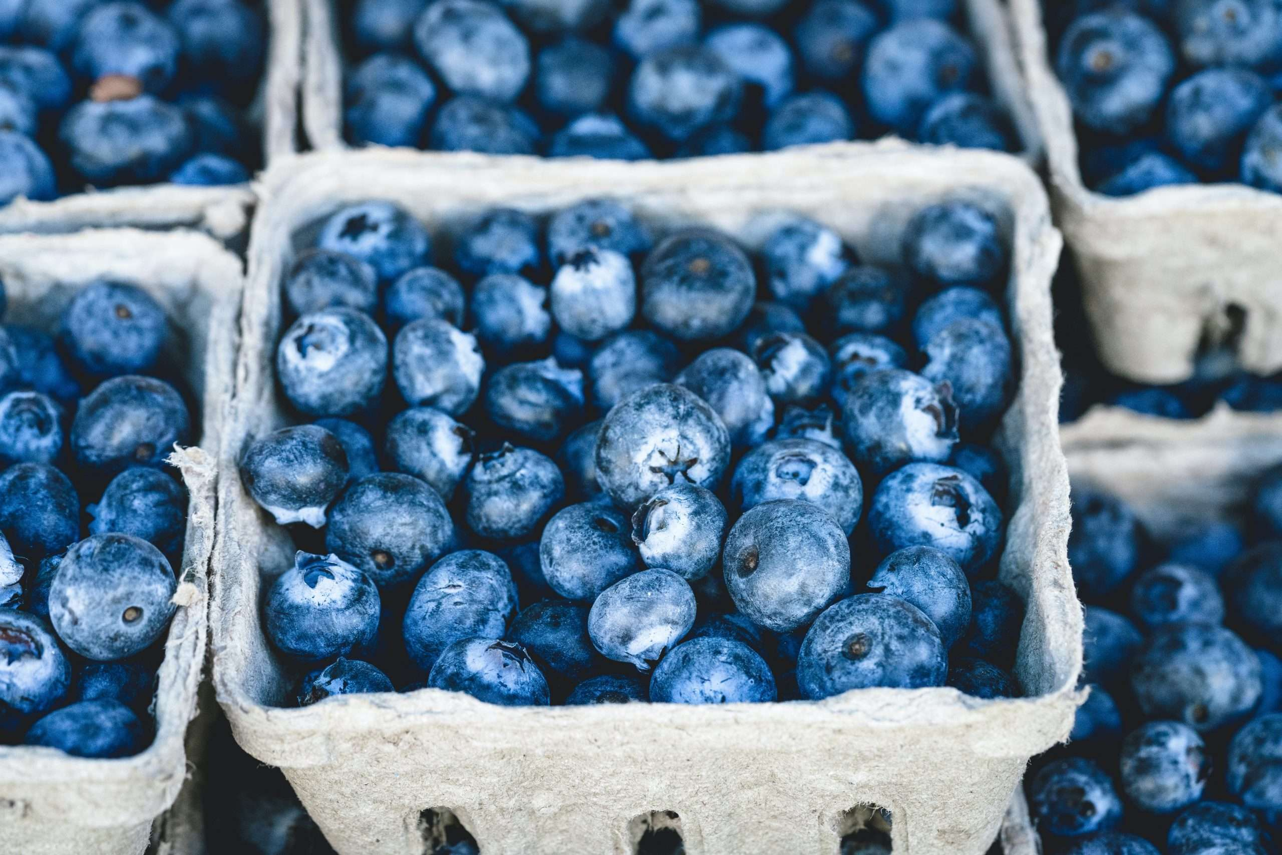 blueberries simple food that tastes good