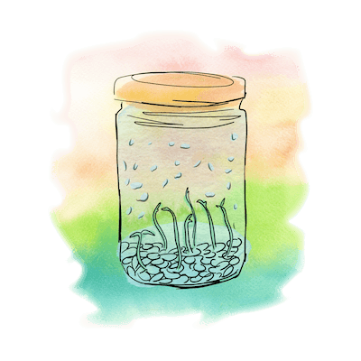 Lentils in Jar